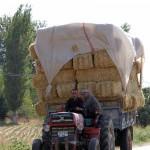 Tracteur en turquie