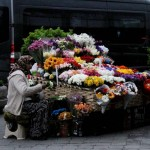 Fleuristes à Istanbul