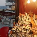 Marché de Sariyer à Istanbul
