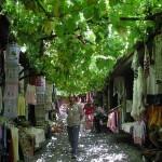 Bazar de Safranbolu