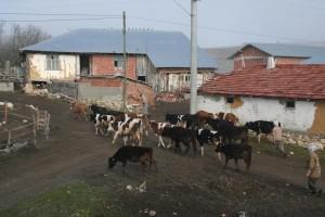 Un village d'Anatolie