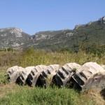 Sur le site de Claros avec la montagne en arriere-plan