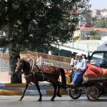 Vendeur de pommes de terre et d'oignons à Hasköy