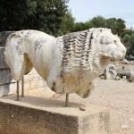 Lion du temple d'apollon de Didymes