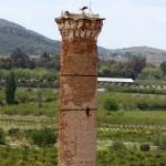 Minaret de la mosquée Isabey à Selçuk