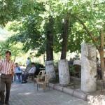 Jardin à thé d'Ağlasun