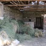 Vestiges antiques dans la cour de la plus vieille maison d'Ağlasun
