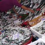 Sur le marché aux poissons de Karaköy à Istanbul