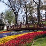 Dans le parc d'Emirgan à Istanbul