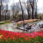 Parc d'Emirgan, Istanbul