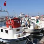 Port de Şile