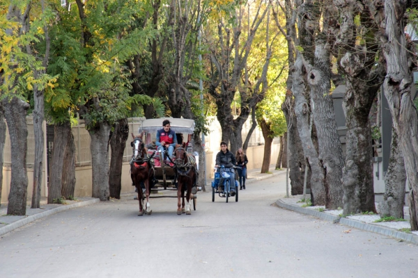 Calèche dans une rue de Büyükada