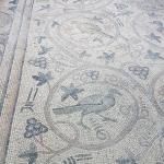 Détail d'une mosaique, musée Haleplibahçe de Şanlıurfa