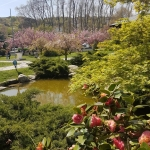 Baltalimanı, Istanbul - jardin japonais