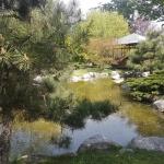 plan d'eau du jardin japonais Baltalimanı à Istanbul