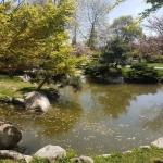 plan d'eau du jardin japonais de Baltalimanı, Istanbul