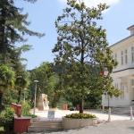 Maison Atatürk à Termal