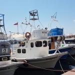 Dans le port de Sinop