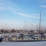 La marina de Sığacık