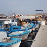 Le petit port de pêche de Sığacık