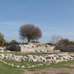 Sur le site antique de Teos