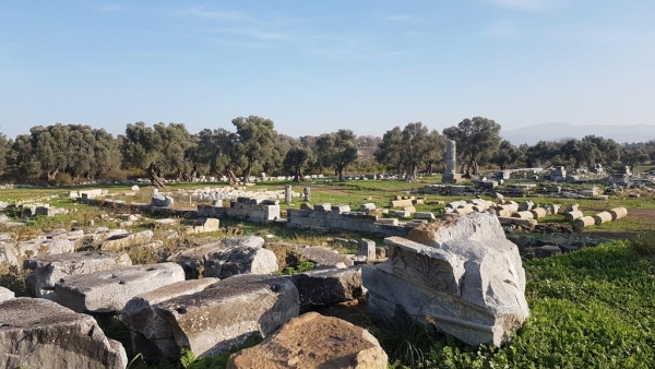 Temple de Dionysos à Teos